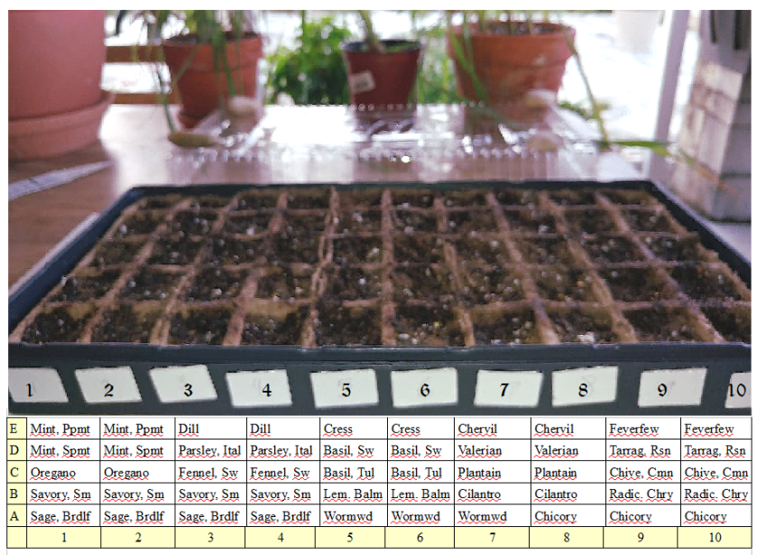 Seed Tray Legend